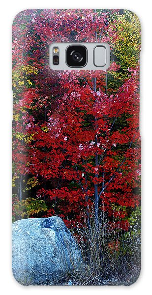 Fabulous Foliage Galaxy Case
