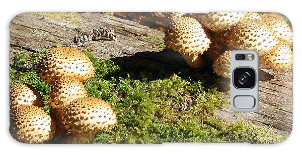 Fabulus Fungi Galaxy Case