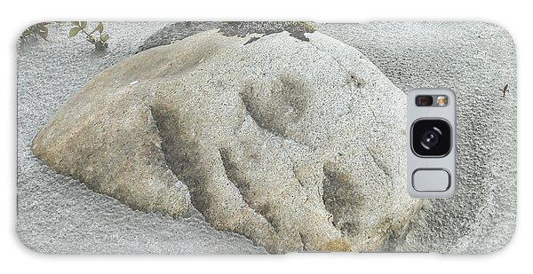 Face In The Sand At Baird Glacier Outwash Galaxy Case