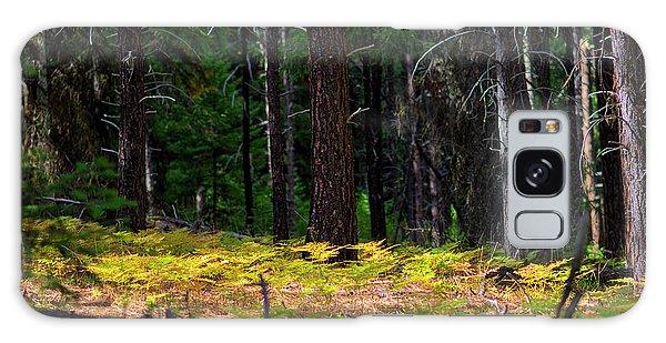 Cascade Mountain Range Fading Ferns Galaxy Case