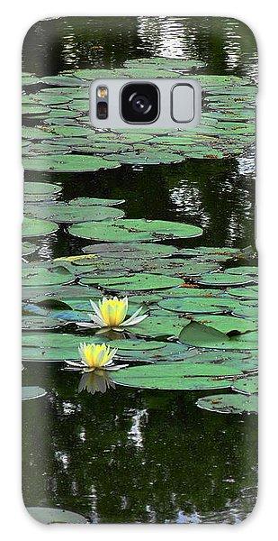 Fairmount Park Lily Pond Galaxy Case