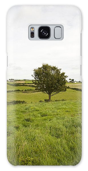 Fairy Tree In Ireland Galaxy Case