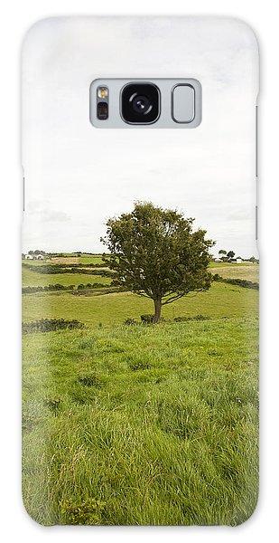 Fairy Tree In Ireland Galaxy Case by Ian Middleton