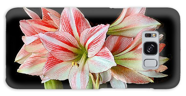 Fairyland Amaryllis  Galaxy Case