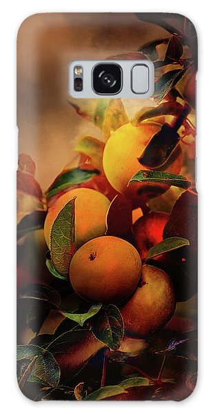 Fall Apples A Living Still Life Galaxy Case