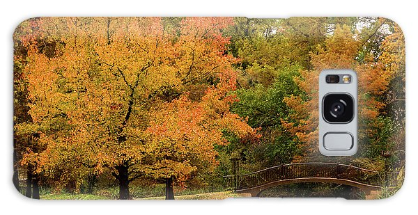 Fall At The Arboretum Galaxy Case