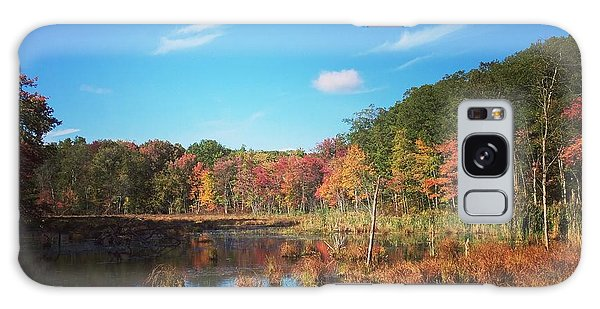 Fall At The Pond Galaxy Case