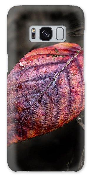 Fall Beech Leaf Galaxy Case