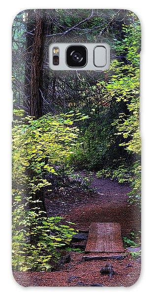 Metolius River Trail Fall Bridge Galaxy Case