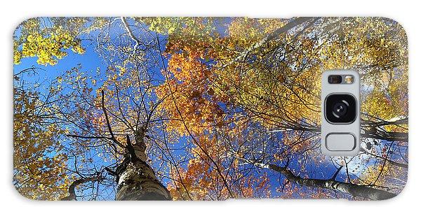 Fall Canopy Patterns 6 Galaxy Case