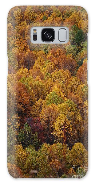 Fall Cluster Galaxy Case by Eric Liller
