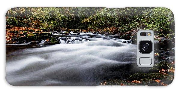 Fall Color At Cedar Creek Galaxy Case