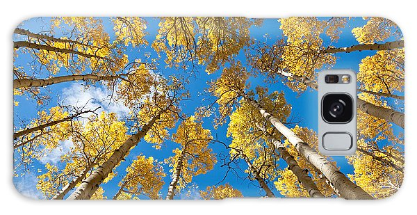 Fall Colored Aspens In The Inner Basin Galaxy Case