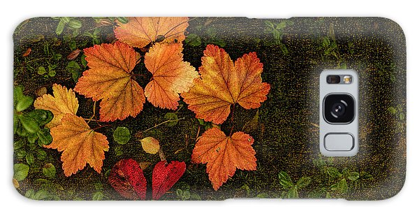 Galaxy Case featuring the photograph Fall Colors by Fred Denner