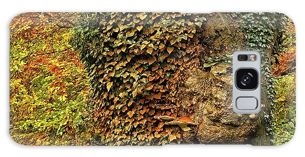 Fall Colors In Nature Galaxy Case
