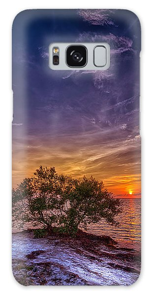 Mangrove Galaxy Case - Fall Colors by Marvin Spates