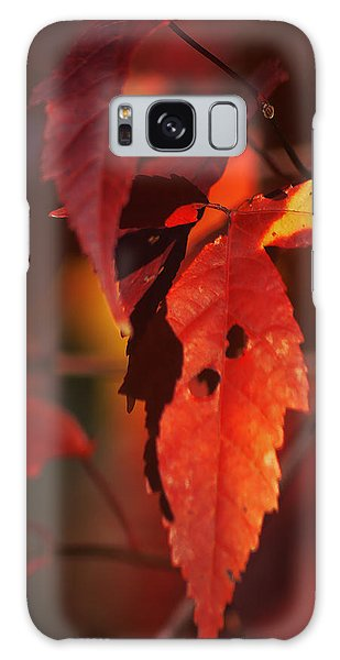 Fall Colors Galaxy Case