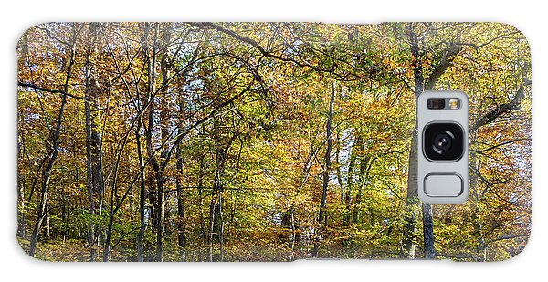 Fall Colors Of Rock Creek Park Galaxy Case