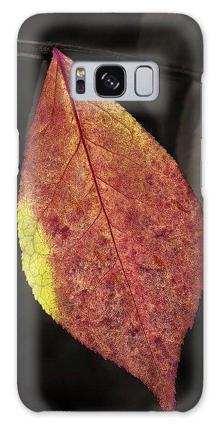 Fall Elder Leaf Galaxy Case