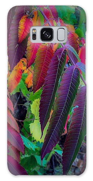 Fall Feathers Galaxy Case