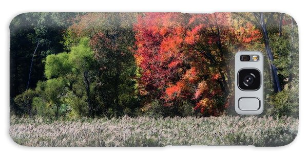 Fall Foliage Marsh Galaxy Case
