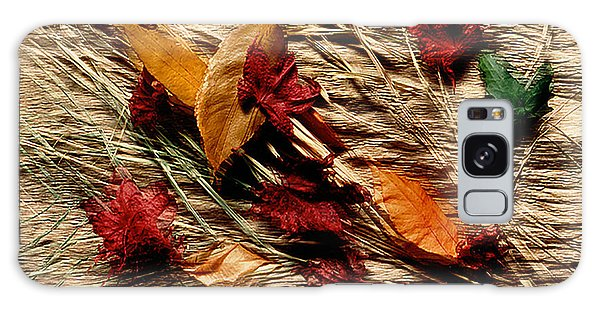 Fall Foliage Still Life Galaxy Case