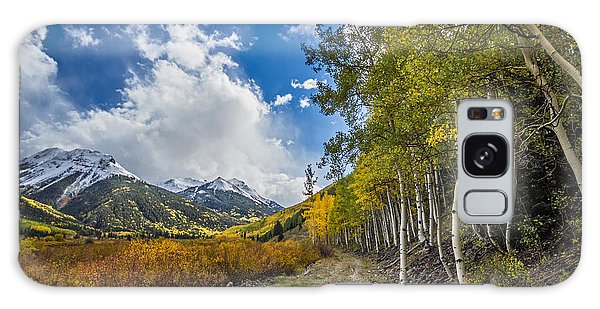 Galaxy Case featuring the photograph Fall In Colorado by Wesley Aston
