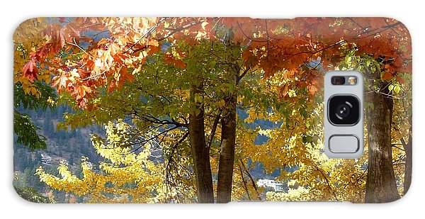 Oyama Galaxy Case - Fall In Kaloya Park 4 by Will Borden