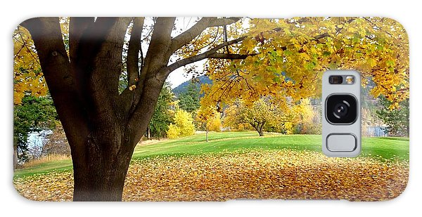 Oyama Galaxy Case - Fall In Kaloya Park 8 by Will Borden