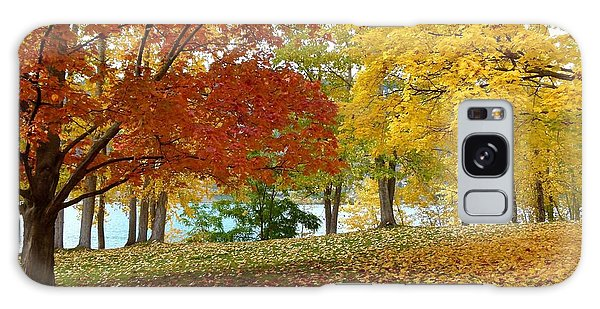 Oyama Galaxy Case - Fall In Kaloya Park 9 by Will Borden