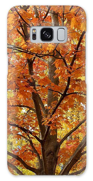 Oyama Galaxy Case - Fall In Kayloya Park 2 by Will Borden