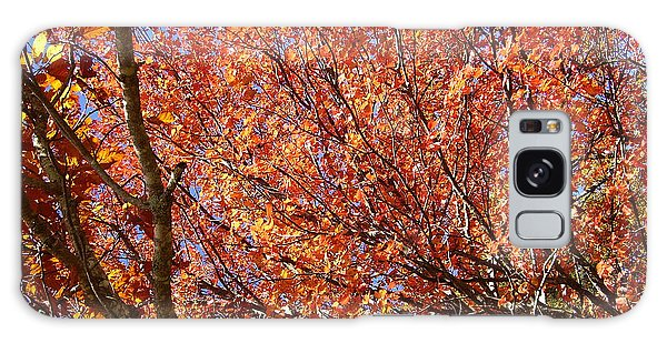 Fall In The Blue Ridge Mountains Galaxy Case