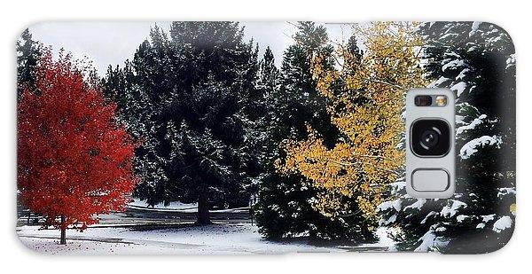 Fall Into Winter Galaxy Case