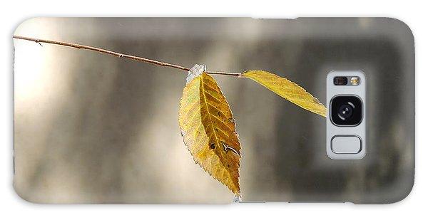 Fall Leaves Galaxy Case