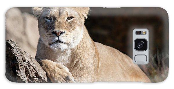 Fall Lioness Galaxy Case
