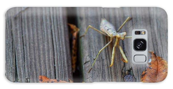 Fall Mantis  Galaxy Case