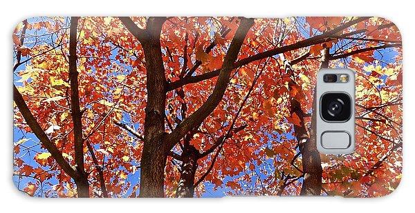 Fall Maple Galaxy Case