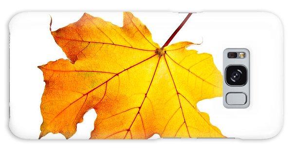 Leaf Galaxy Case - Fall Maple Leaf by Elena Elisseeva