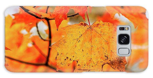Fall Maple Leaf Galaxy Case