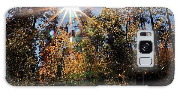 Fall Mt. Lemmon 2017 Galaxy Case