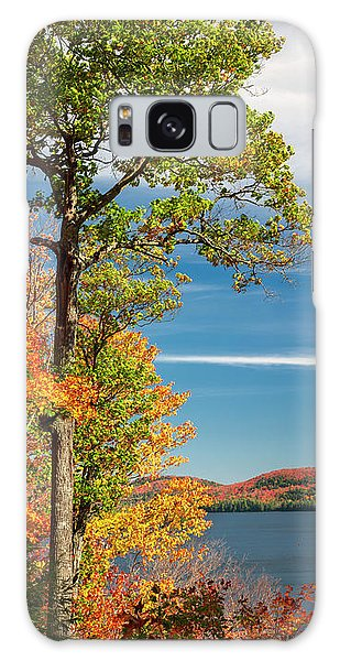 Galaxy Case featuring the photograph Fall Oak Tree by Elena Elisseeva