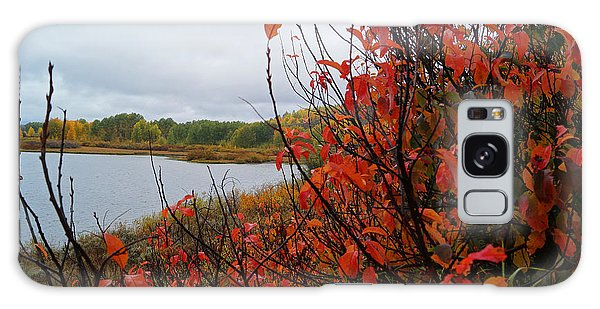 Fall On The Lake Galaxy Case