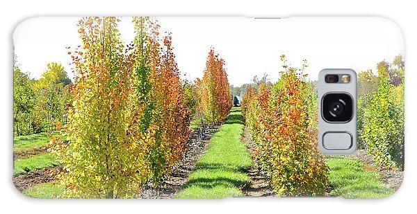 Fall On The Tree Farm Galaxy Case