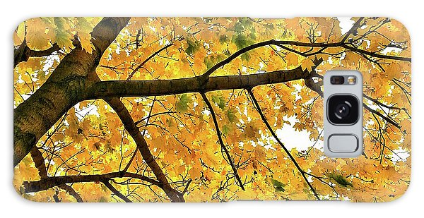 Fall On William Street Galaxy Case