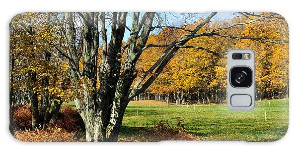 Fall Pasture Galaxy Case