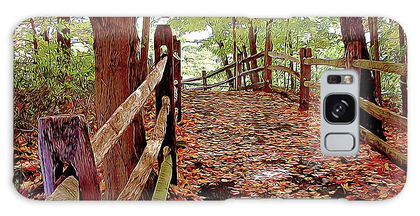 Fall Pathway Galaxy Case