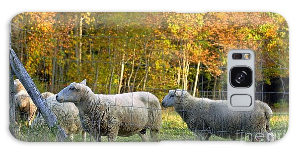 Fall Sheep Galaxy Case