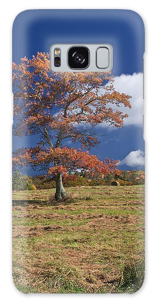 Fall Tree Galaxy Case