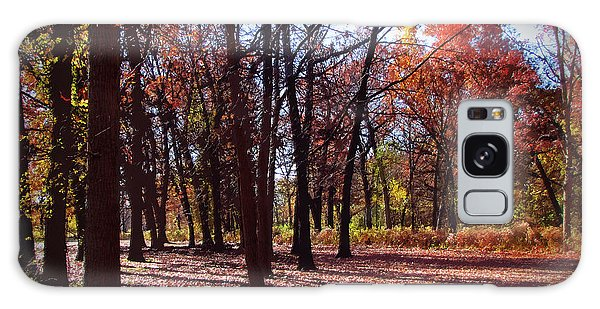 Fall Tree Shadows 2 Galaxy Case by Cedric Hampton