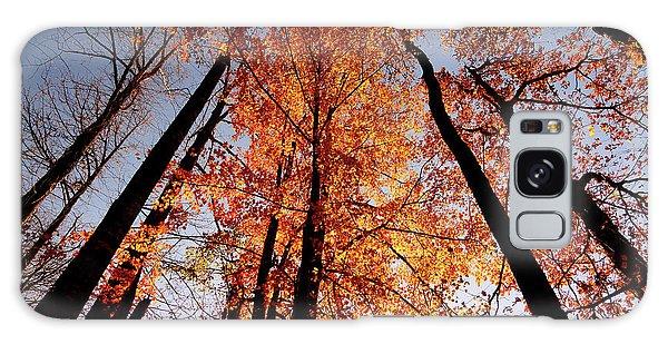Fall Trees Sky Galaxy Case